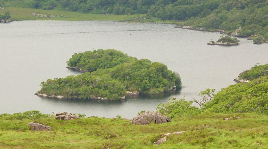 Ladies View mit einem ruhige Szenerie und See oder Wasserstelle
