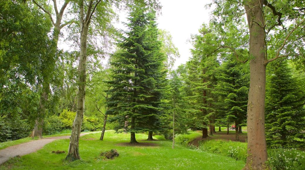 Roath Park caracterizando um parque