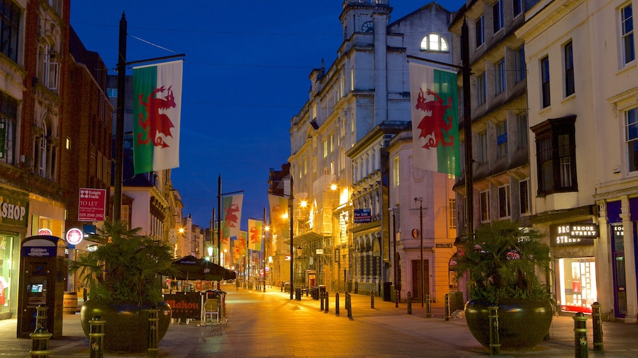 Cardiff which includes a city, night scenes and street scenes