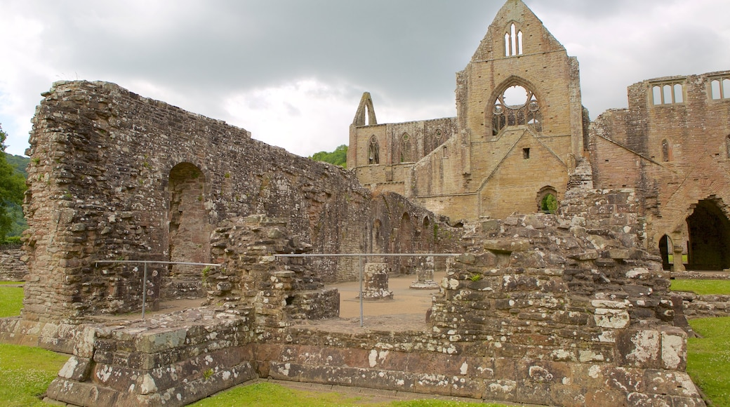 Tintern Abbey showing heritage elements, building ruins and heritage architecture