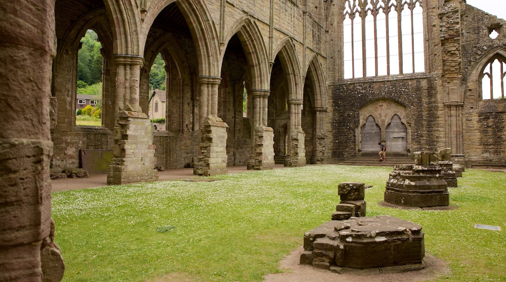 Tintern Abbey featuring building ruins, heritage elements and heritage architecture