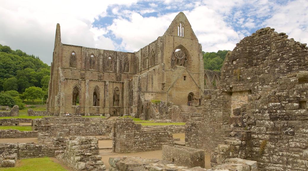 Abdij van Tintern inclusief historisch erfgoed, historische architectuur en een ruïne