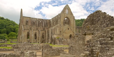 Tintern Abbey showing heritage elements, heritage architecture and building ruins