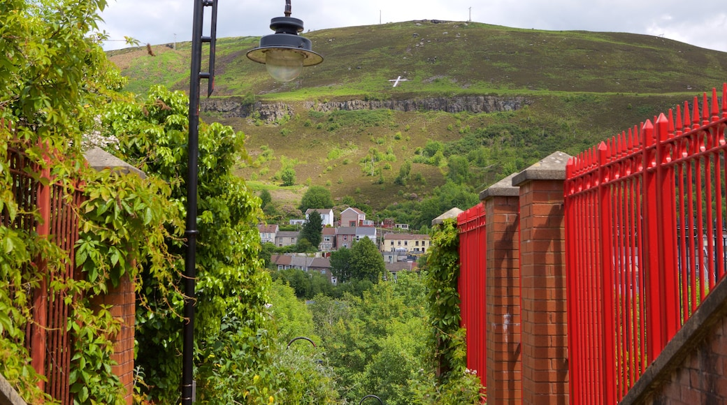 Rhondda Valley showing a ruin and tranquil scenes