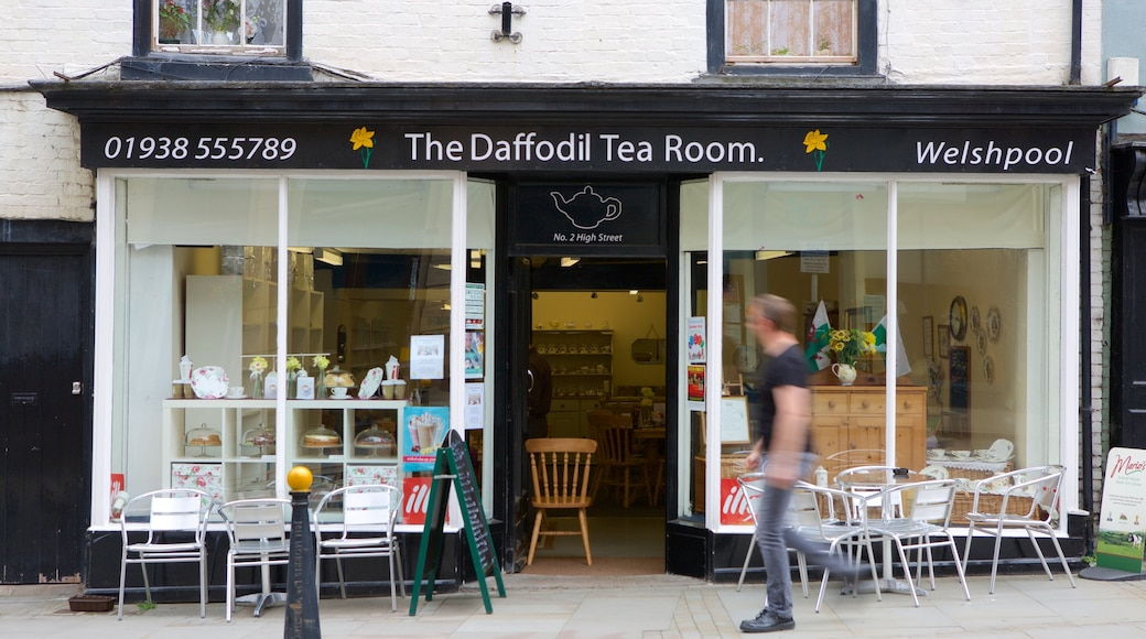 Welshpool showing café lifestyle as well as an individual male