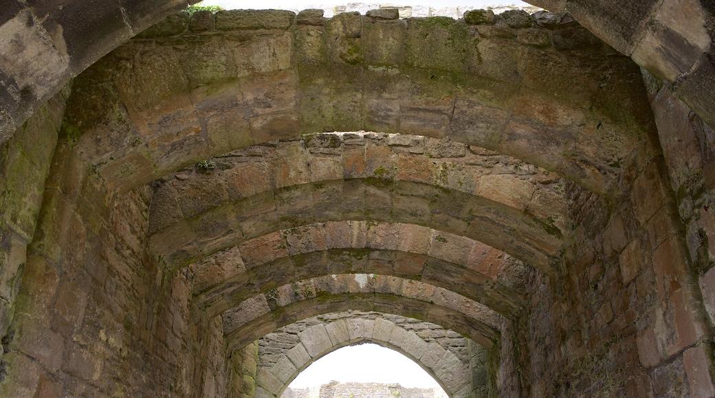 Beaumaris Castle das einen Burg, historische Architektur und Geschichtliches