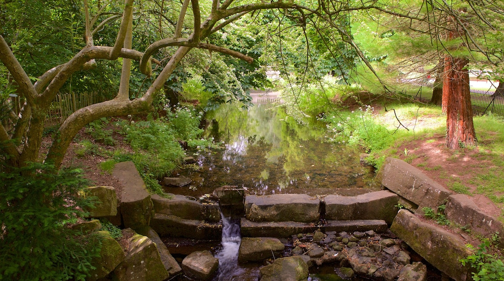 Roath Park mostrando um jardim e um rio ou córrego