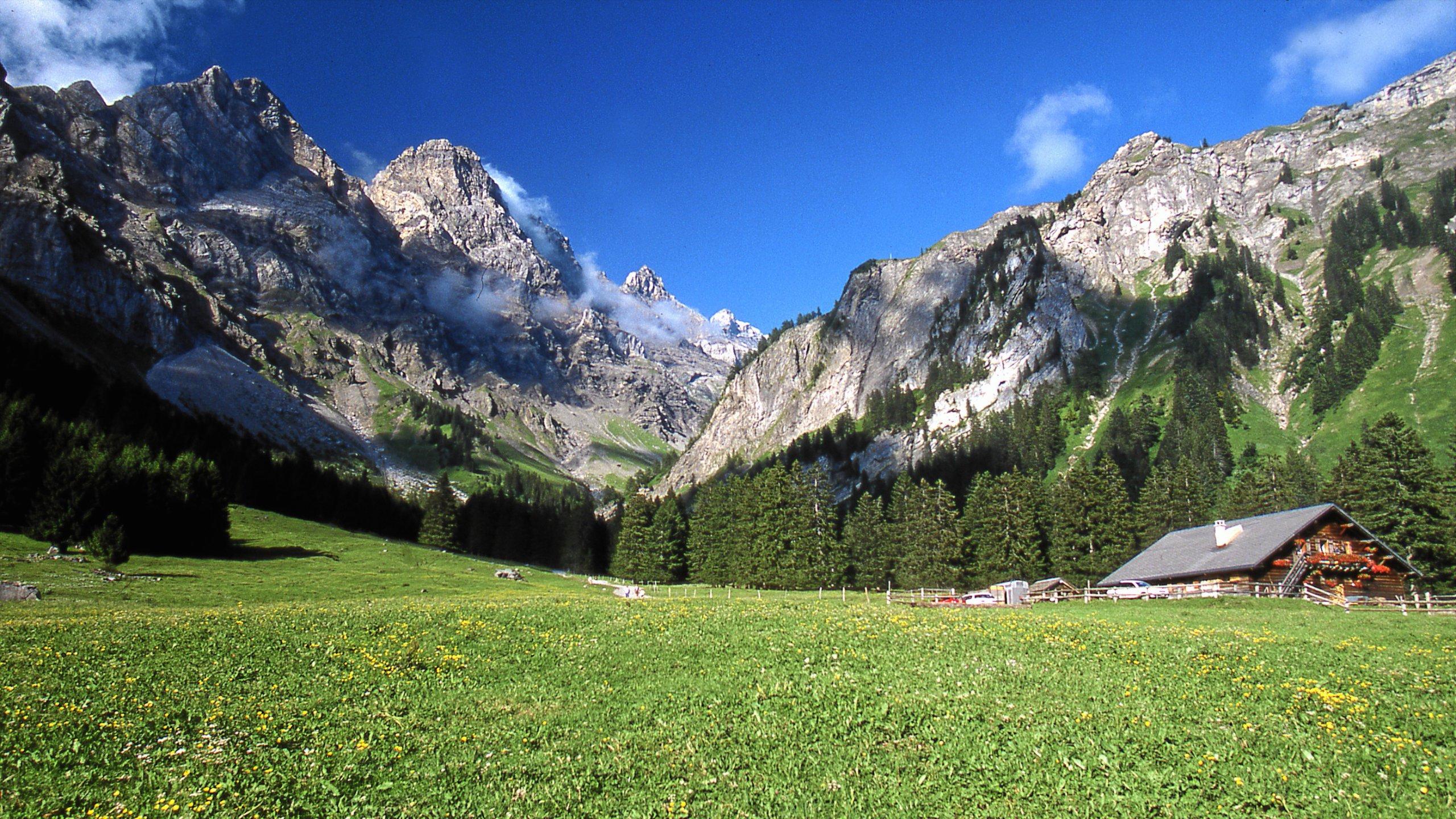 Alpe des Chaux, Gryon, Canton of Vaud, Switzerland