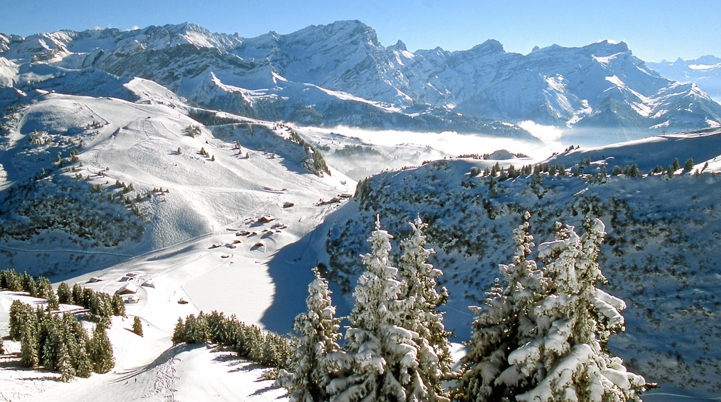 Villars showing snow, forest scenes and landscape views