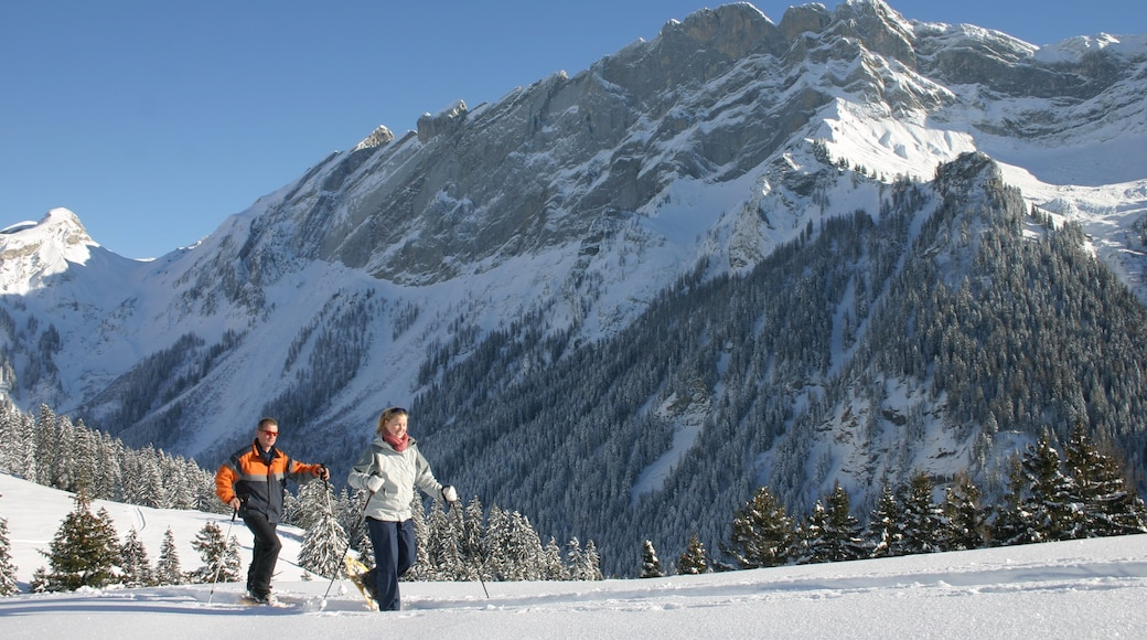 Villars which includes mountains, snow and forests