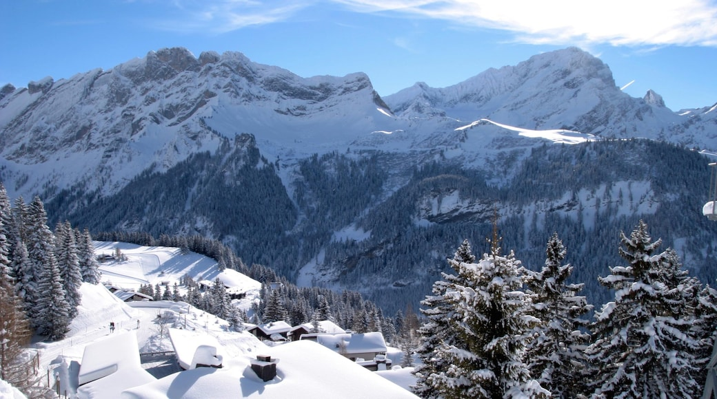 Villars which includes forests, snow and mountains