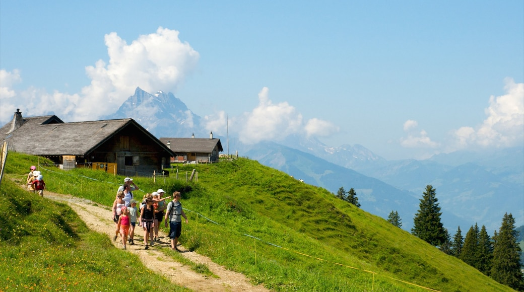 Villars featuring hiking or walking and tranquil scenes as well as a family
