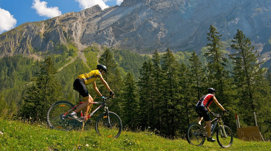 Villars showing mountains, forests and mountain biking