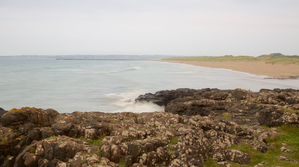 Castlerock Beach showing general coastal views, a sandy beach and rocky coastline