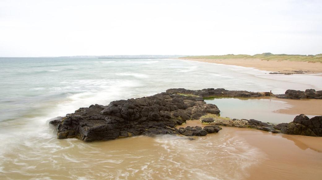 Castlerock Beach which includes general coastal views, rocky coastline and a sandy beach