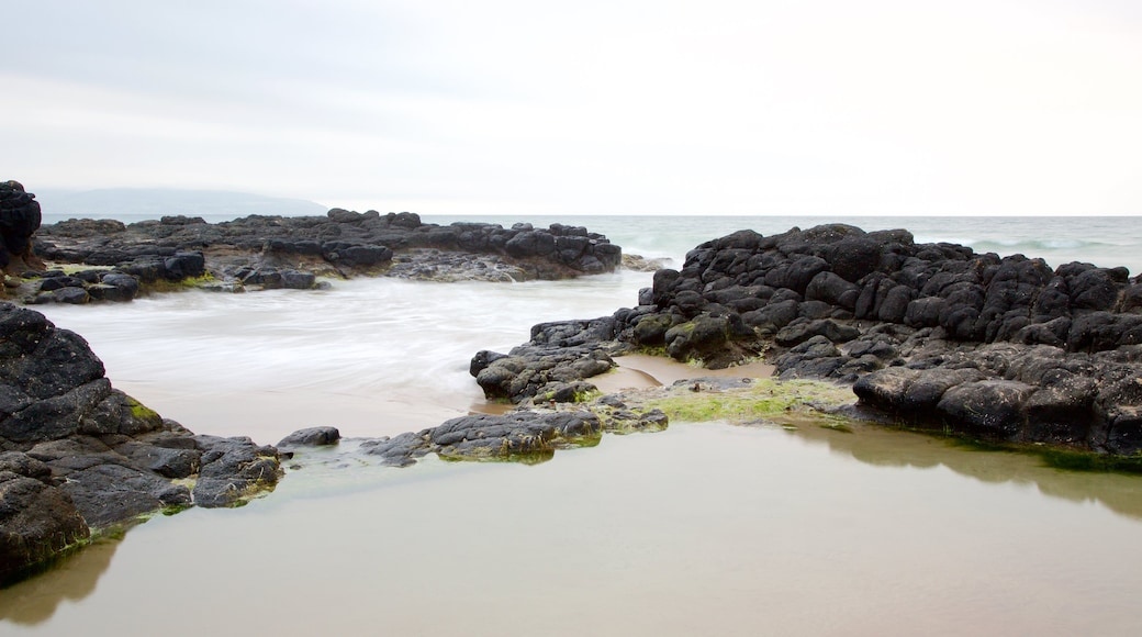 Castlerock Beach showing a sandy beach, rocky coastline and general coastal views