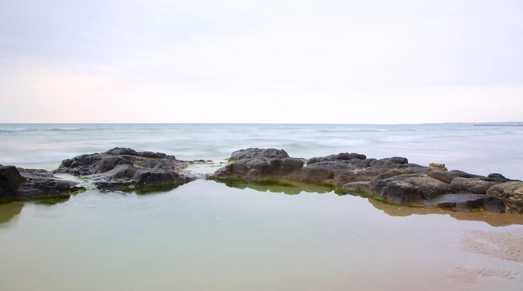 Castlerock Beach featuring general coastal views