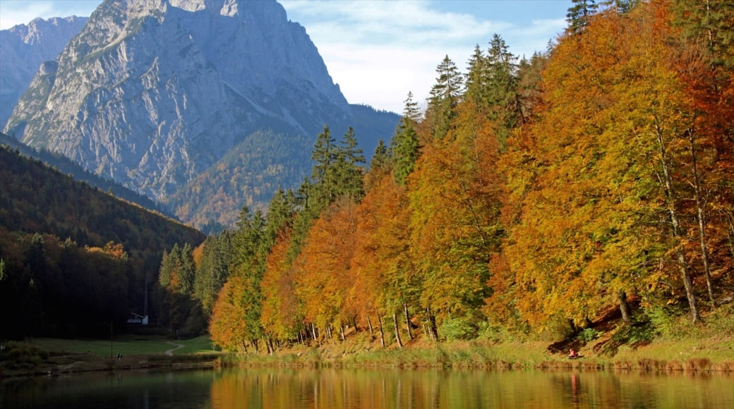 Garmisch-Partenkirchen featuring a river or creek, autumn leaves and tranquil scenes