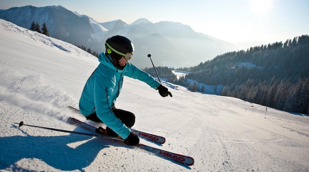 Spitzingsee welches beinhaltet Schnee und Skifahren sowie einzelne Frau