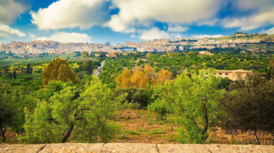 Agrigente qui includes panoramas et ville