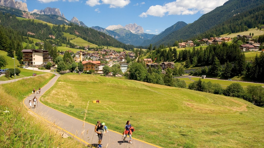 Fassa Valley which includes a city and landscape views as well as a family