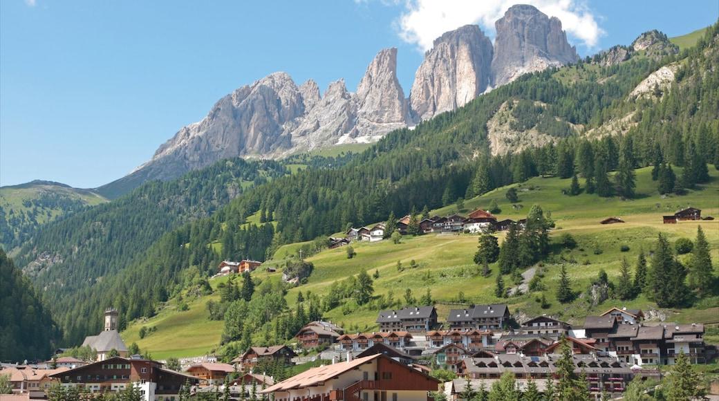 Fassatal mit einem Waldmotive, Landschaften und Berge