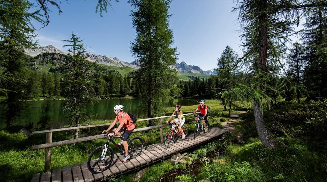 Fassatal welches beinhaltet Teich und Fahrradfahren sowie kleine Menschengruppe