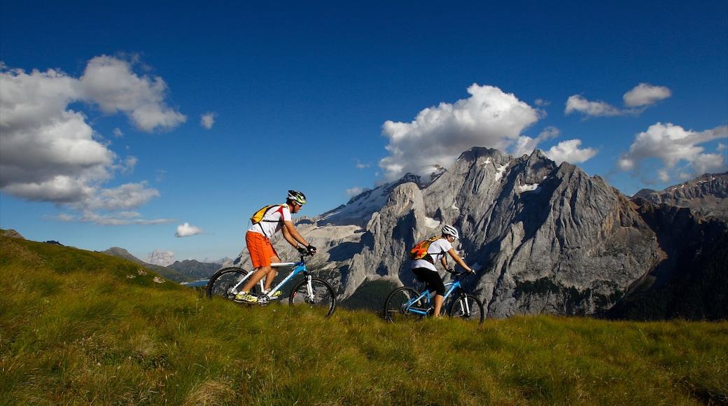 Fassatal welches beinhaltet Berge, ruhige Szenerie und Mountainbiking