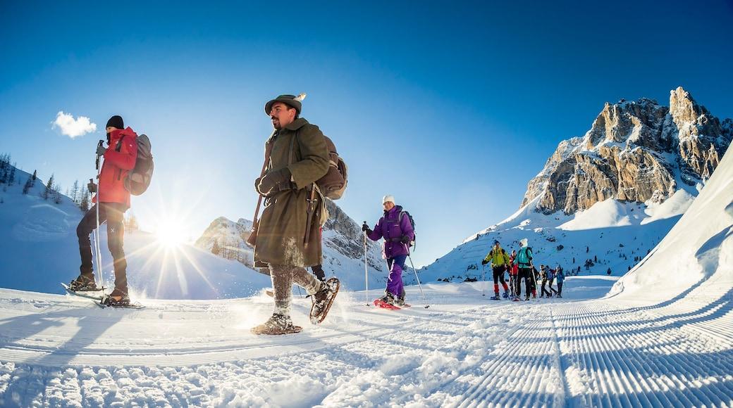 Wintersportort Cortina d\'Ampezzo das einen Wandern oder Spazieren und Schnee sowie kleine Menschengruppe