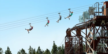 Heavenly Ski Resort showing zip lining as well as a small group of people