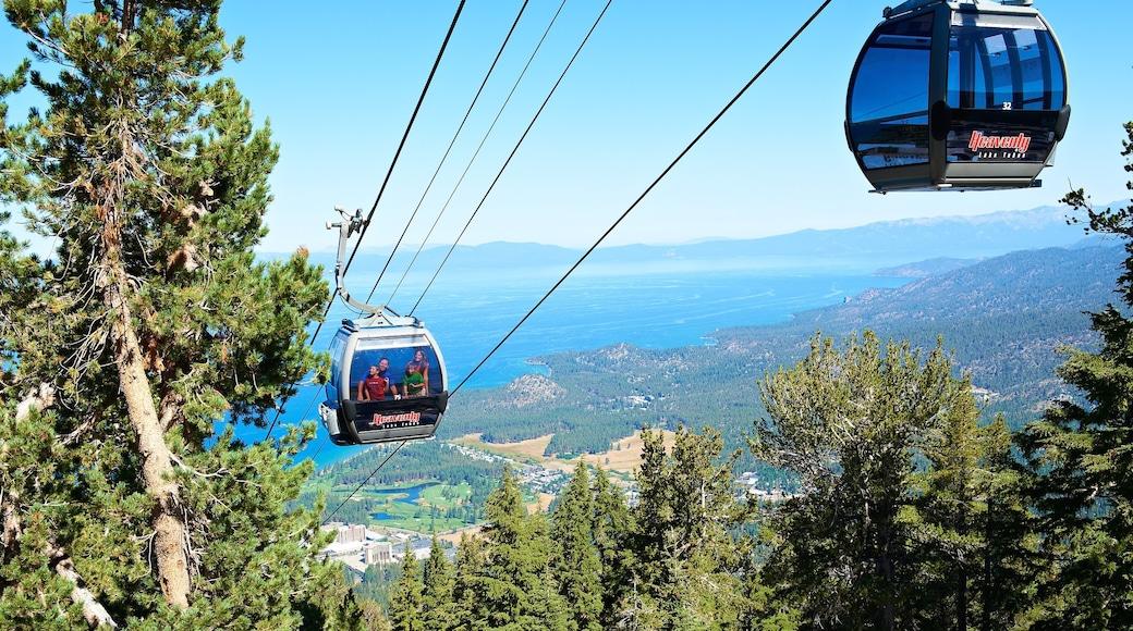 Heavenly Ski Resort ofreciendo escenas forestales, vistas de paisajes y una góndola