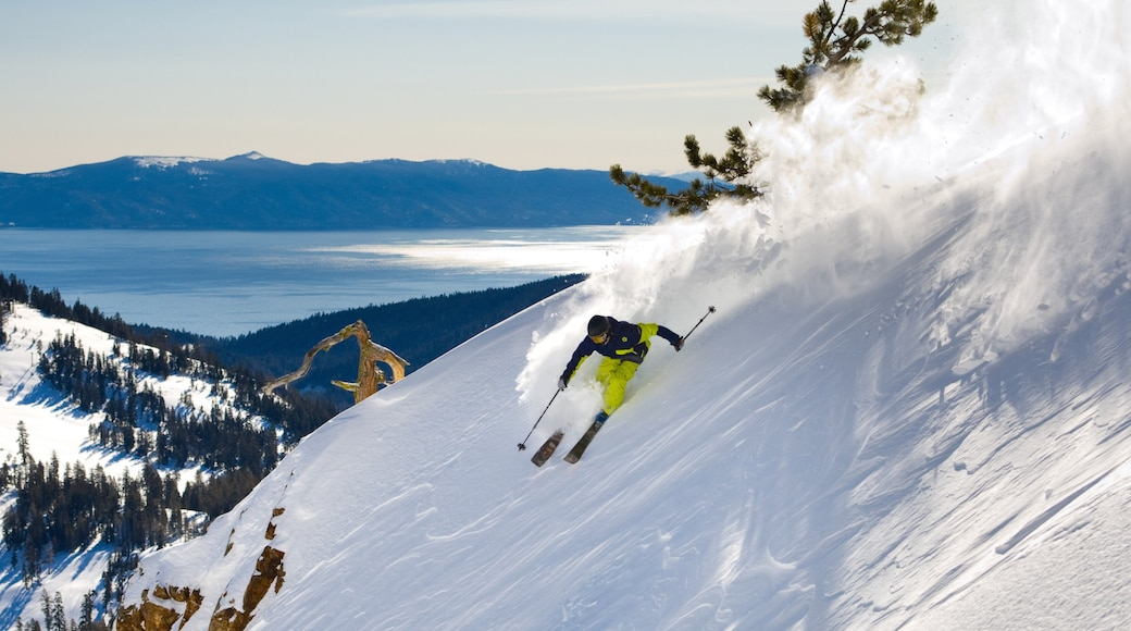 Alpine Meadows Ski Resort showing snow, landscape views and snow skiing