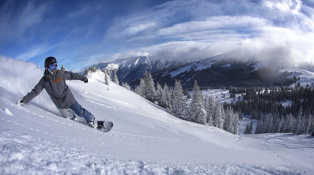 Estación de esquí Copper Mountain que incluye imágenes de bosques, nieve y ski en la nieve