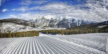 Copper Mountain Ski Resort which includes snow, forest scenes and mountains