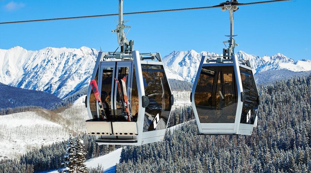 Vail Ski Resort ofreciendo nieve, bosques y una góndola
