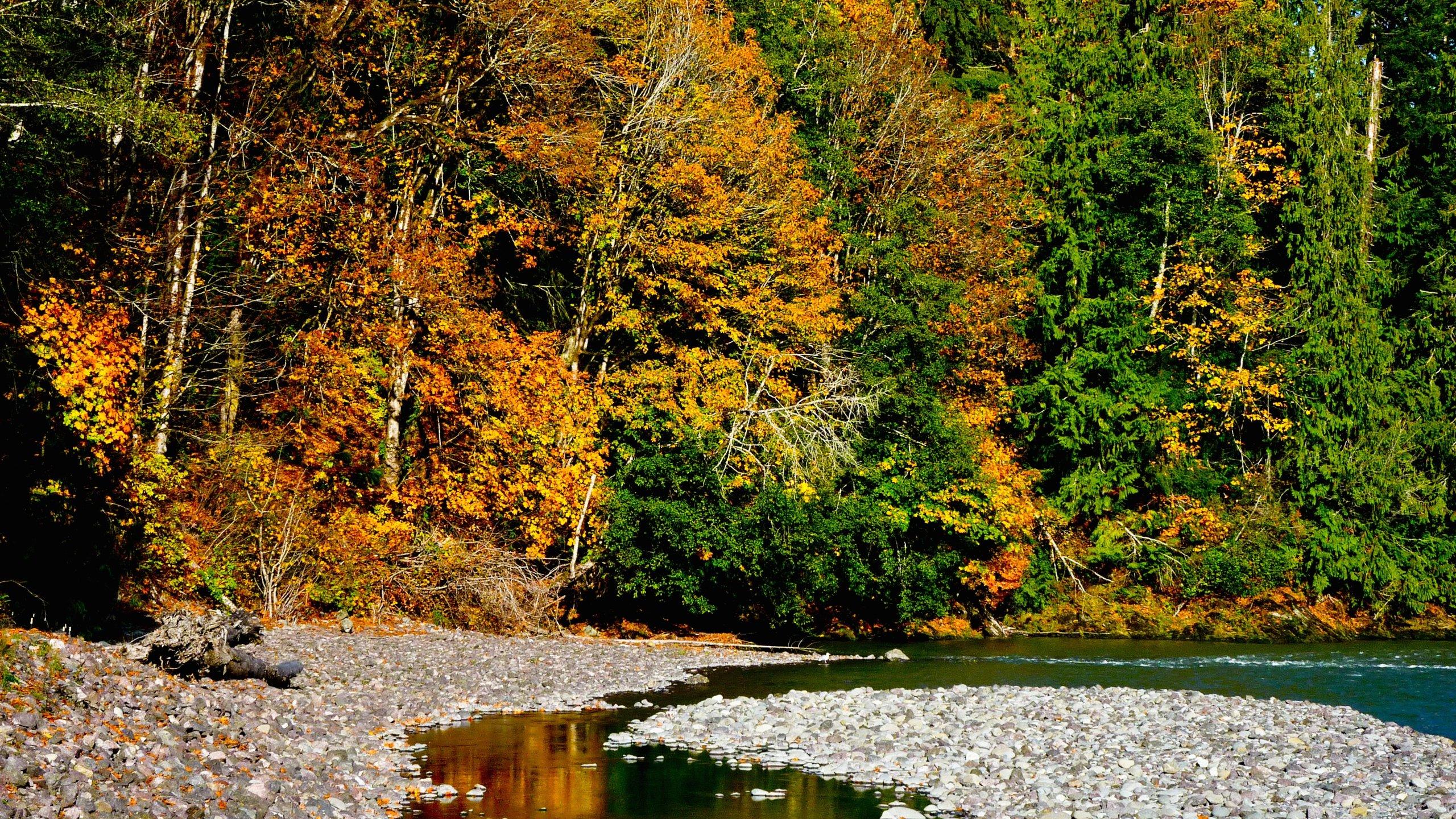 Grays Harbor County, Washington, United States of America
