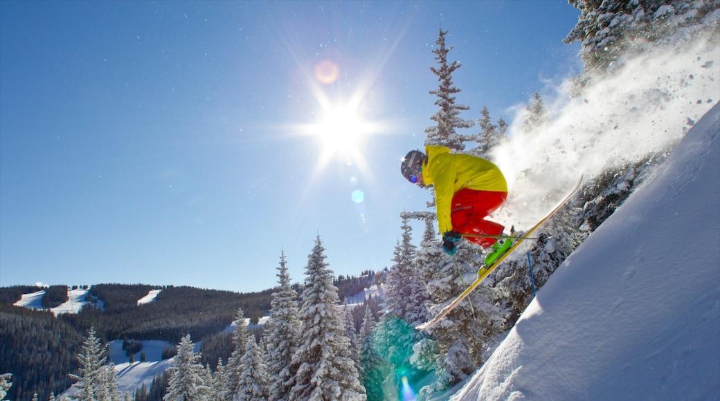 Breckenridge Ski Resort que incluye nieve, bosques y ski en la nieve