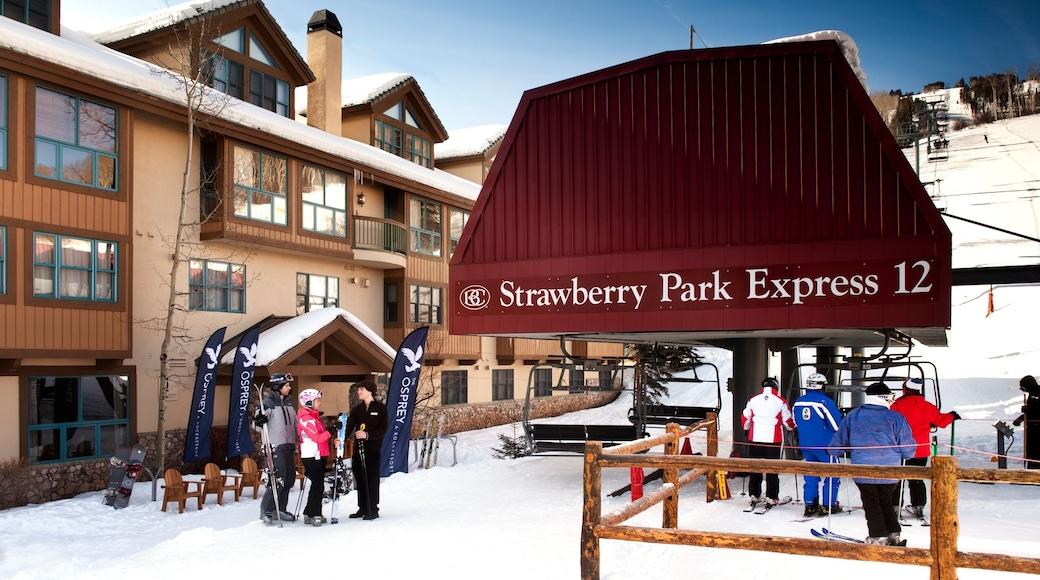 Vail que incluye una góndola, nieve y ski en la nieve
