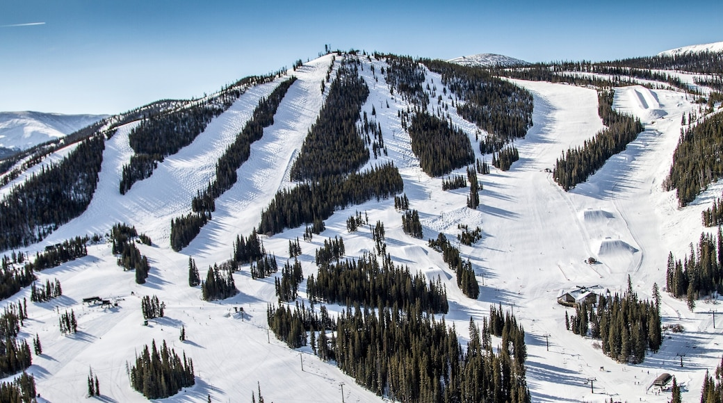 Winter Park Ski Resort featuring mountains, forest scenes and snow