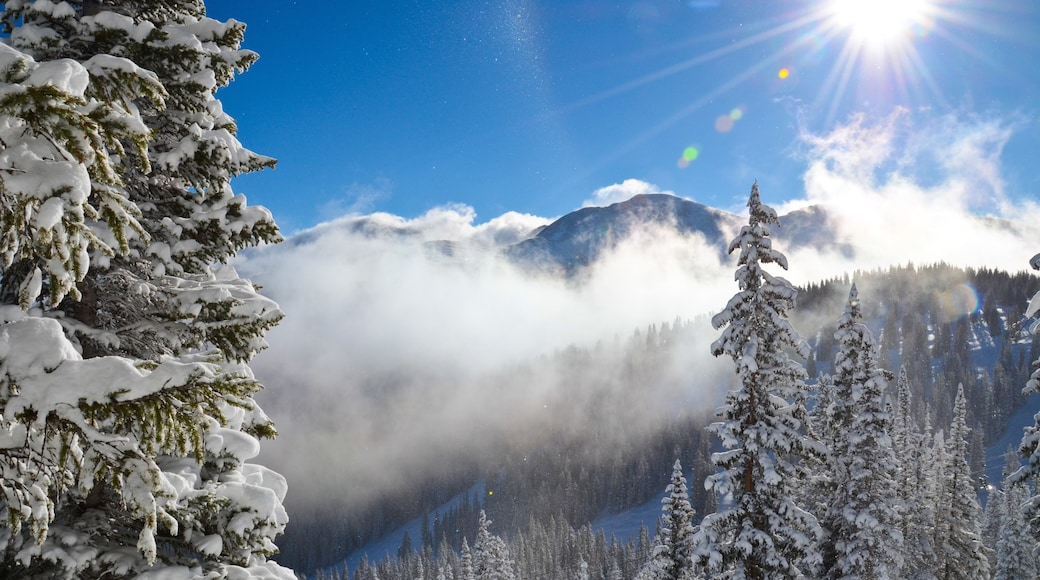 Winter Park Ski Resort which includes snow, forest scenes and tranquil scenes
