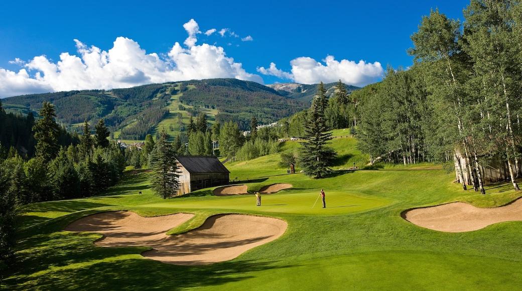 Beaver Creek mostrando vista panorámica, bosques y golf