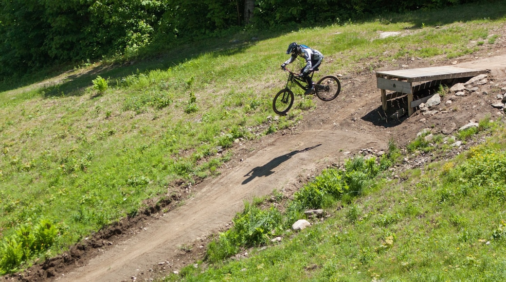 Mount Snow which includes mountain biking as well as an individual male