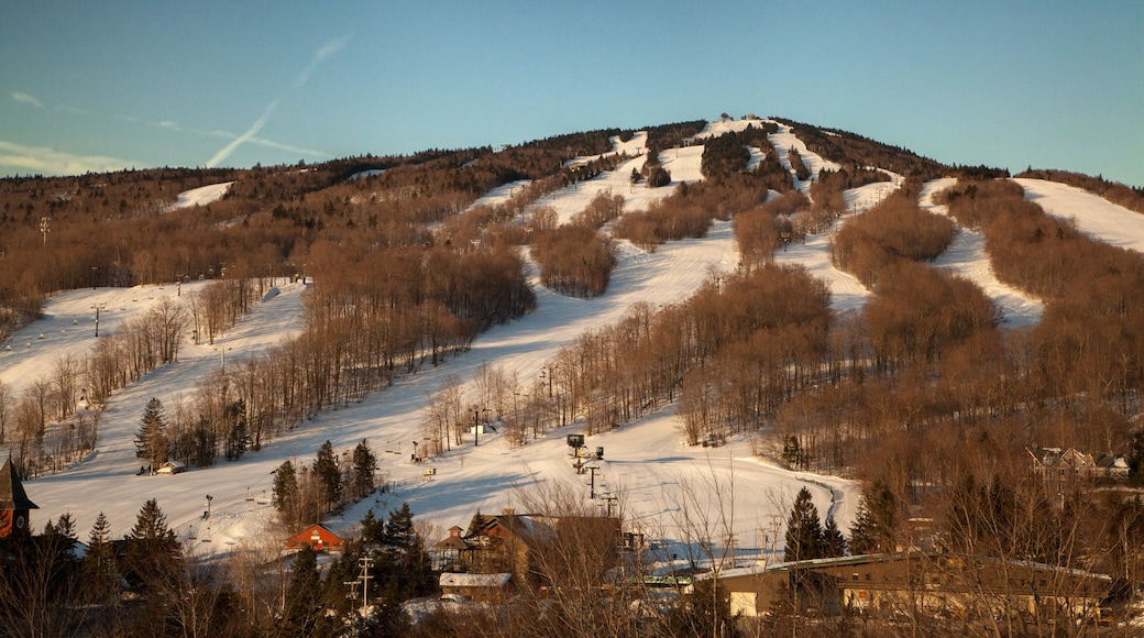 Mount Snow which includes snow and forests