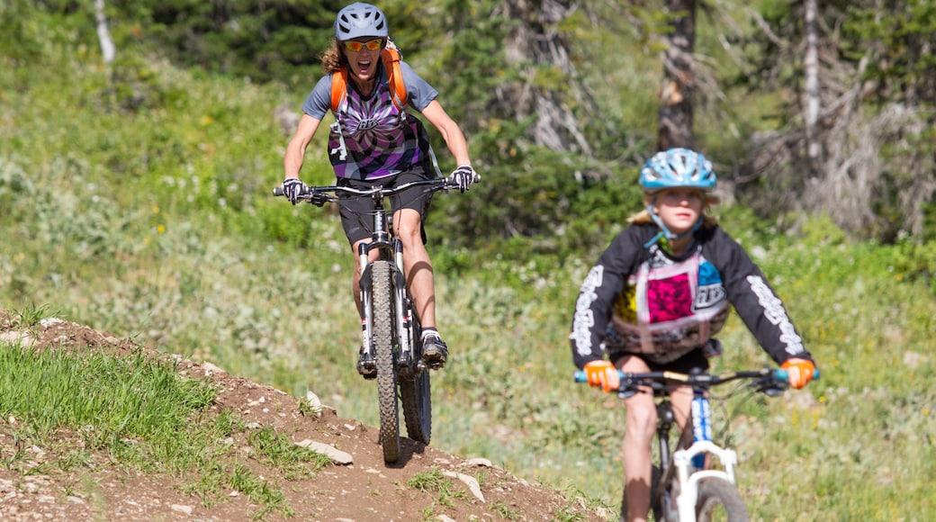 Grand Targhee Resort das einen Mountainbiking sowie kleine Menschengruppe
