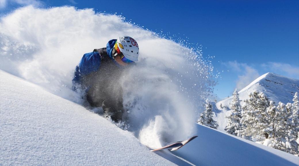 Grand Targhee Resort das einen Schnee und Skifahren sowie einzelner Mann