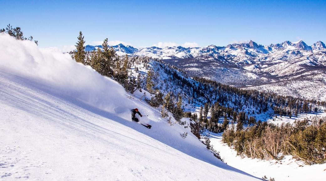 Mammoth Mountain Ski Resort mostrando neve, montanhas e esqui na neve