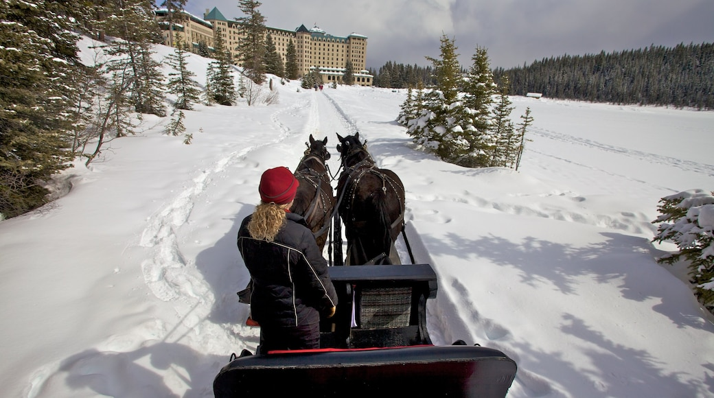 Lake Louise which includes snow and horseriding as well as an individual femail