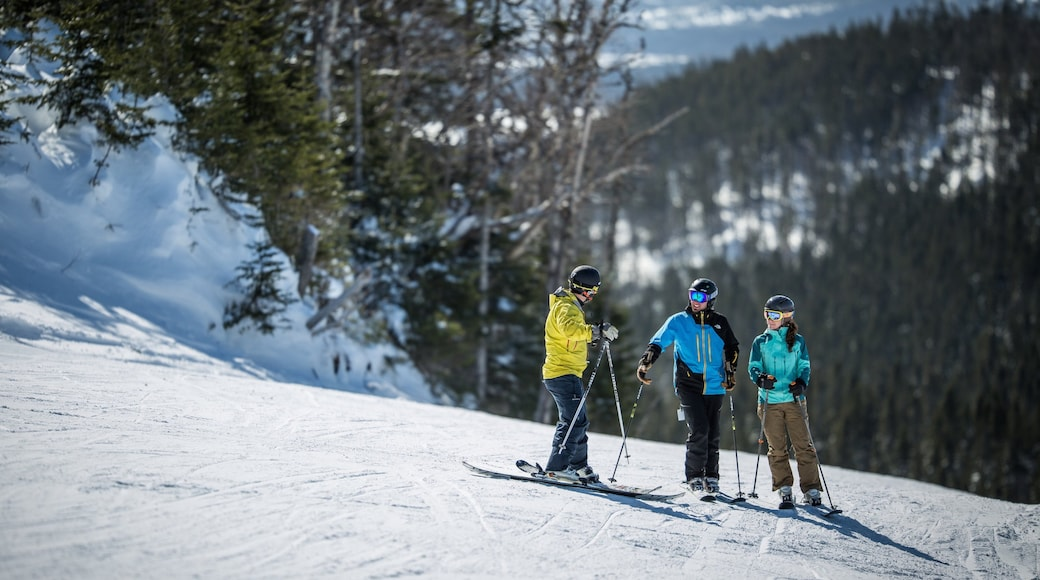Marble Mountain which includes snow and snow skiing as well as a small group of people