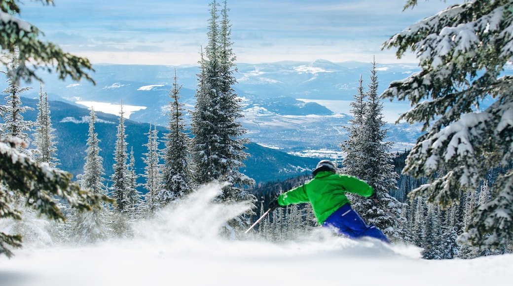 Silver Star Ski Resort featuring forests, snow and landscape views