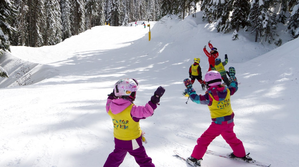 Silver Star Ski Resort featuring snow and snow skiing as well as children